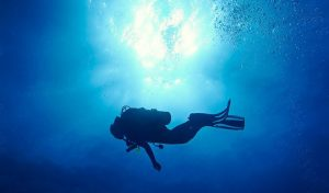 The Complete Guide to Diving in Koh Tao